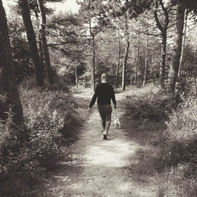 Man in het bos, away from the old