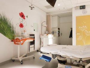 Verloskamer Geboortehuis Leiden-Bevallingsverhaal