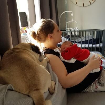 Ontzwangeren na bevalling