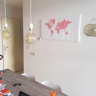 Roze canvas wereldkaart