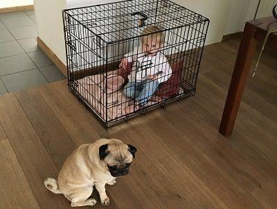 Huis kindveilig maken